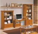 Bookcase Lux N4