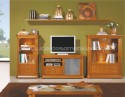 Bookcase Lux N5