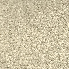 Synthetic skin beige